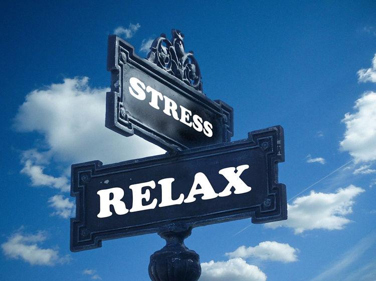 Welche Nährstoffe bei Stress?